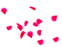 http://hastur.sakura.ne.jp/RitualMagic/Texture/Texture408a.jpg